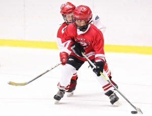 Na zabezpečenie bezpečnosti u hráčov sa využíva hokejová výstroj